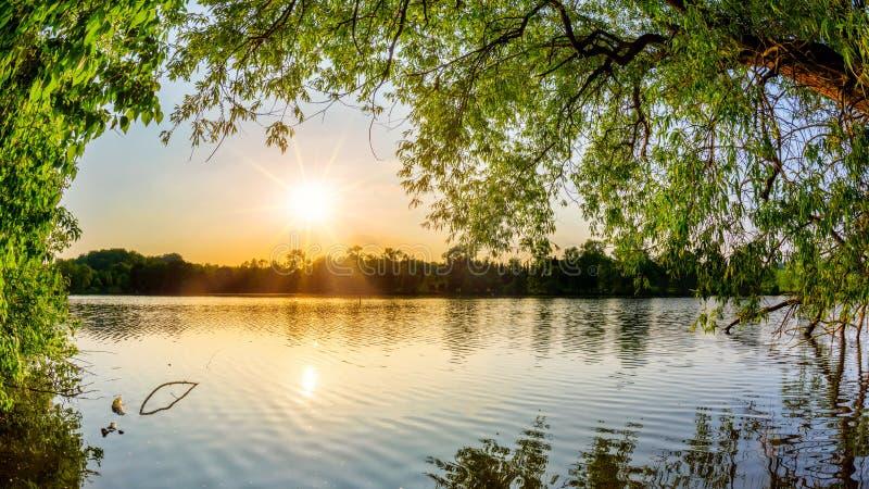 See mit Bäumen bei Sonnenuntergang lizenzfreie stockfotografie