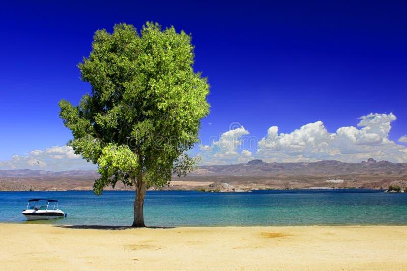 See Mohave-Strand Nevada lizenzfreie stockfotos