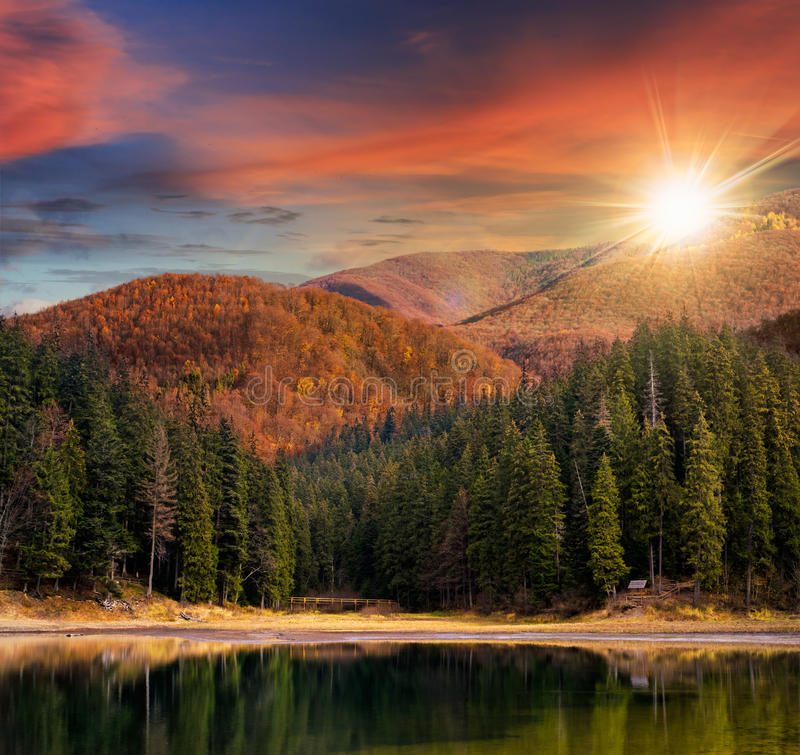 See nahe dem Berg im Kiefernwald bei Sonnenuntergang stockfoto