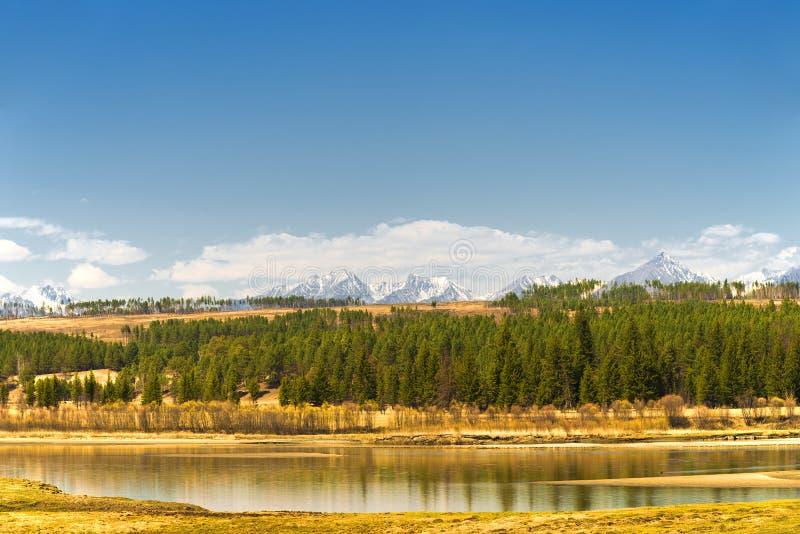 See nahe dem Wald auf einem Hintergrund von Bergen stockbild