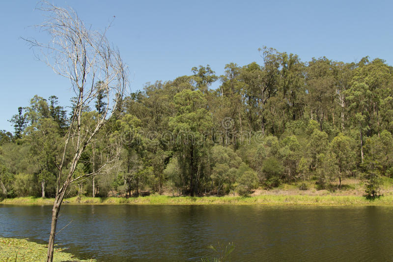 See Nationalparks 2 D'anguilar lizenzfreie stockfotografie