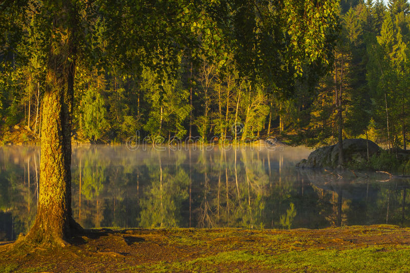 See in Norwegen, das im schönen Morgenlicht ein Sonnenbad nimmt stockfotos