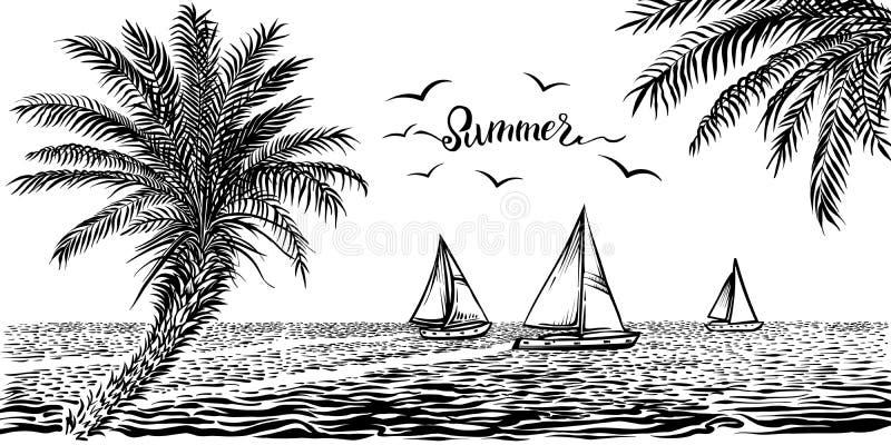 See- oder des Ozeanstropische Ansicht mit Segelbooten und Palmen Panoramische Strandzeichnung des Vektors stock abbildung