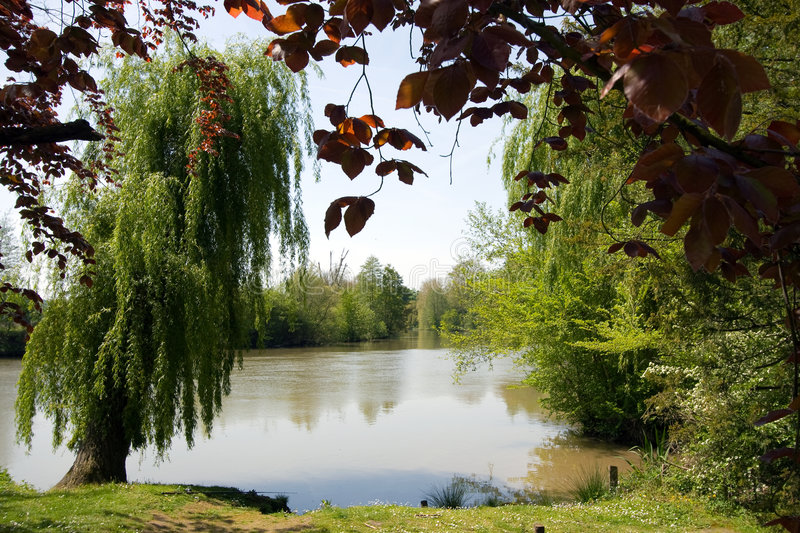 Download See Through From Park To River Stock Photo - Image: 5157806