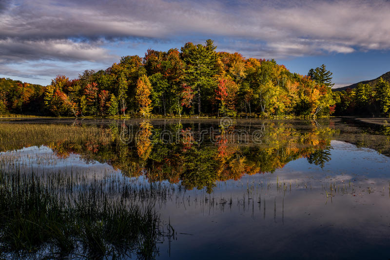 See-Reflexionen - bunte Bäume - Herbst/Fall - Vermont stockfotografie