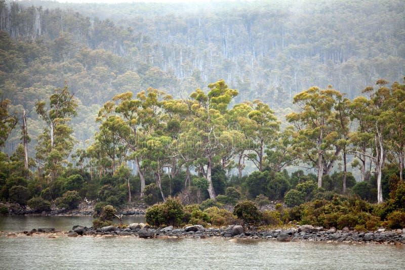 See-St Clair Tasmania stockfotografie