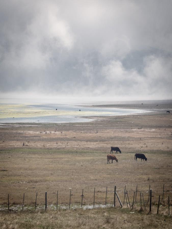 See in Tafi-del Valle in Argentinien lizenzfreie stockbilder