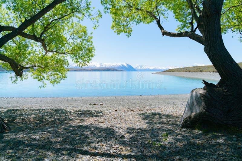 See Tekapo-Landschaft stockbild