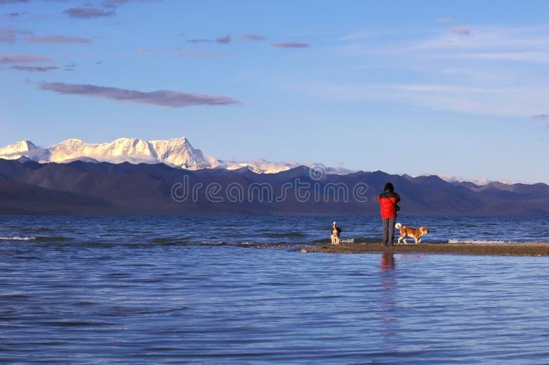 See in Tibet lizenzfreie stockfotos
