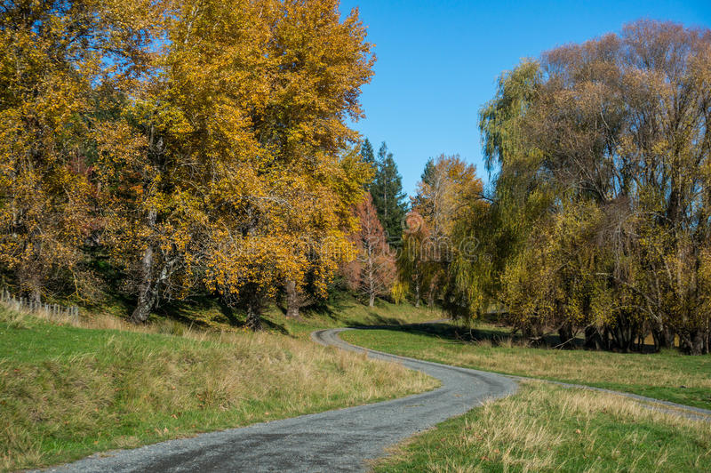 See Tutira-Weg im Herbst Hawkes Bucht Irgendwo in Neuseeland lizenzfreie stockfotos