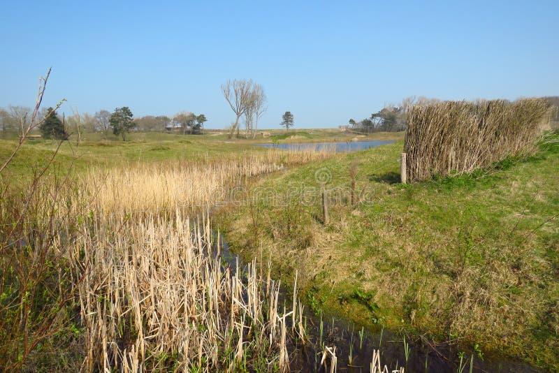 See und Fluss in der Polderlandschaft, Naturreservat Het Zwin, Knokke, Belgien lizenzfreie stockfotografie