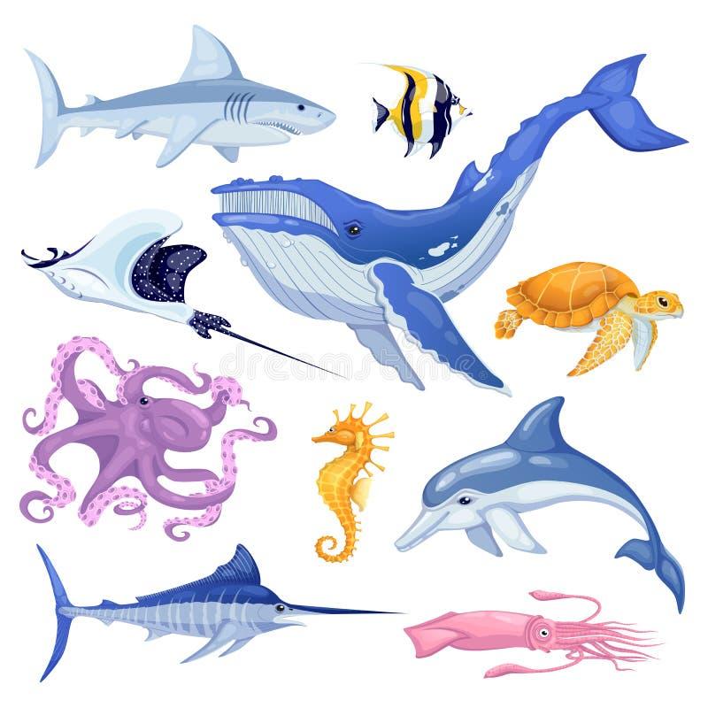 See- und Ozeantiere eingestellt Vector die Karikaturmeeresfischillustration, lokalisiert auf weißem Hintergrund lizenzfreie abbildung
