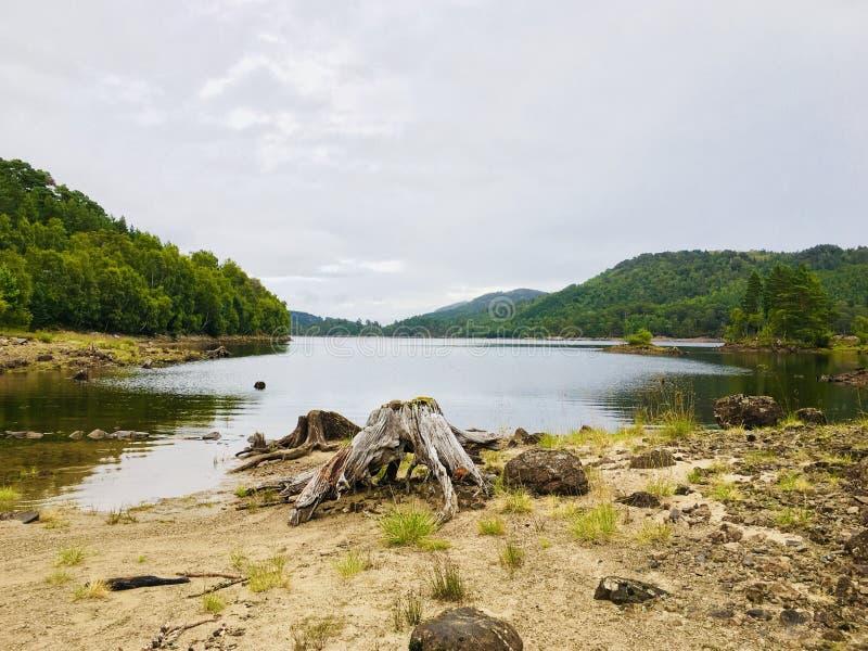 See und Wald lizenzfreie stockfotos