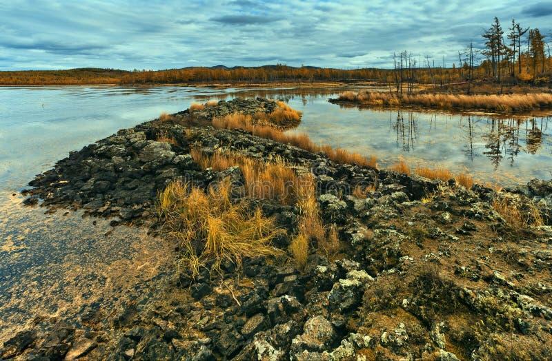 See und Wald im Herbst lizenzfreies stockbild