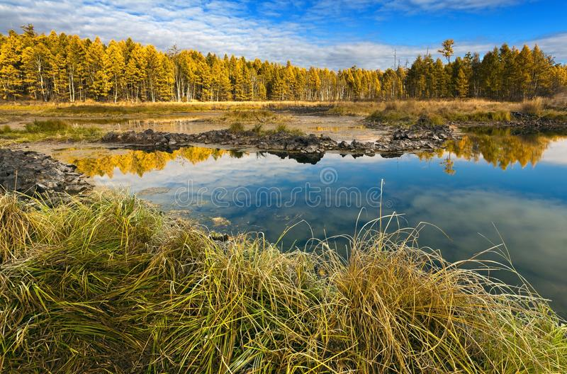 See und Wald im Herbst stockbilder