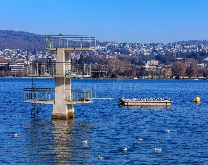 See Zürich im Winter lizenzfreies stockbild