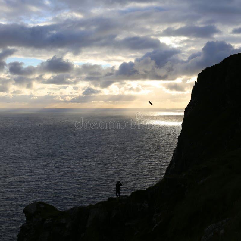 Seeadler, der in der Abendsonne von der Insel Runde (Norwegen) fliegt stockfoto