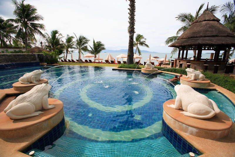 Seeansicht-Swimmingpool mit Froschbrunnenstatuen, Sonnenruhesesseln nahe bei dem Garten und Pagode lizenzfreie stockbilder