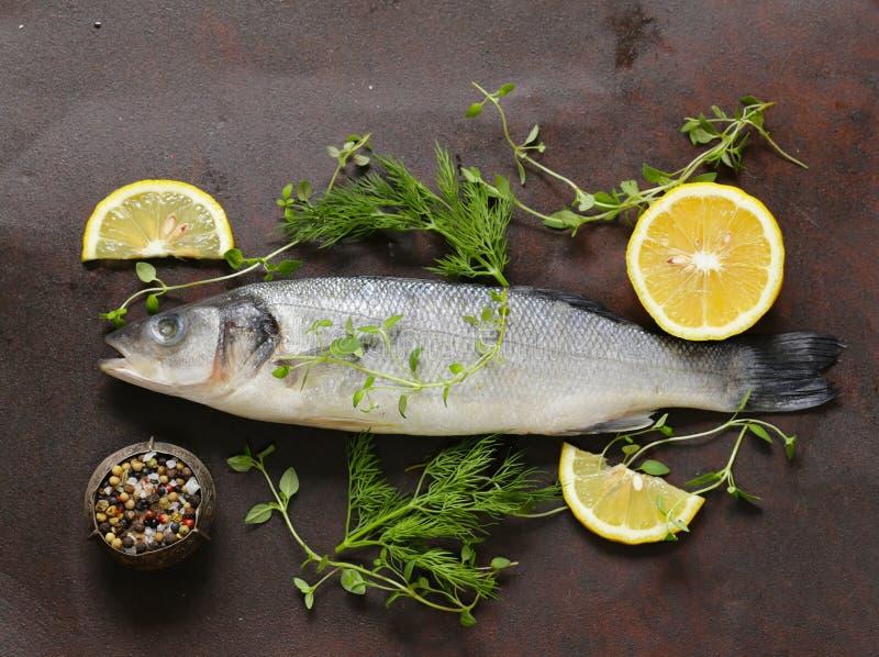 Seebarsch der rohen Fische lizenzfreie stockfotografie