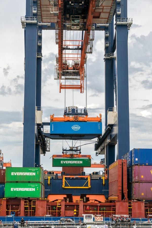 Seebehälterbock-Ladenschiff stockfotografie
