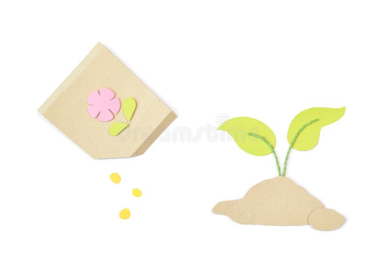Seed and growing plant paper cut on white background royalty free stock image