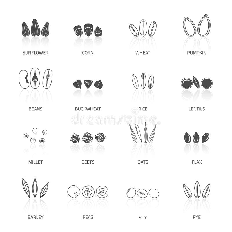 Download Seed Icon Set stock vector. Illustration of collection - 51221976