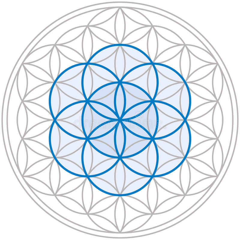 Seed Of Life In Flower Of Life royalty free illustration