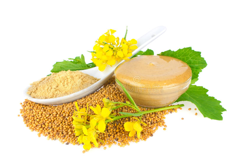 seed pulver Blommor Sidor och klar senap fotografering för bildbyråer