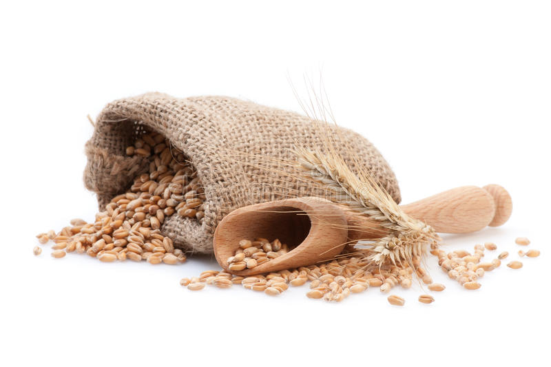 Seed in small burlap sack stock photography