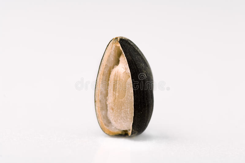 Seed Sunflower. Roasted sunflower seed which has no husk partially royalty free stock photography