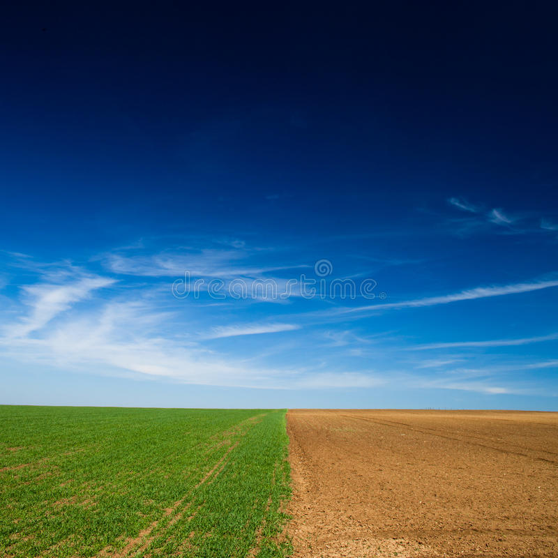 Seeded field and a field lying fallow. Crop rotation concept: a seeded field and a field lying fallow on a lovely spring day stock photo
