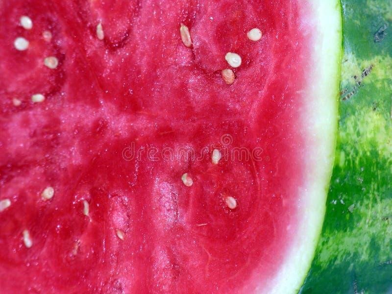 seedless vattenmelon royaltyfri fotografi