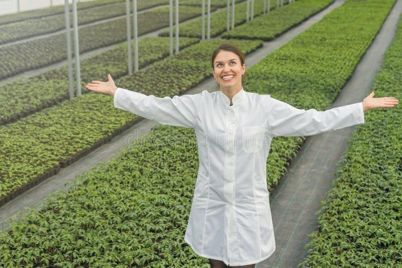 Seedlings production, Spring Seedlings. Successful young. Nursery owner. Greenhouse Seedlings Nursery stock photo