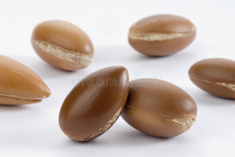 Seeds of argan. A close-up on white royalty free stock photo