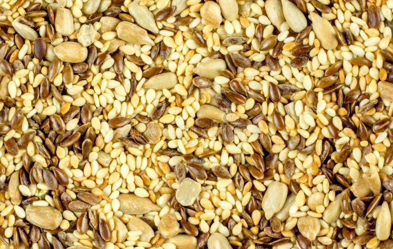 Seeds background - pumpkin, sunflower, flax, sesame stock image
