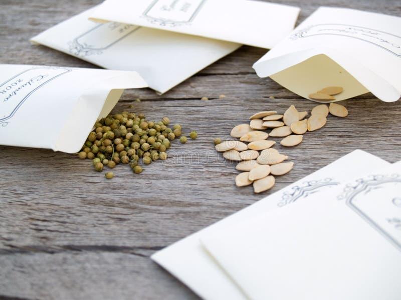 Seeds in baggies stock photo