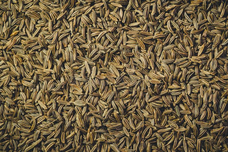 Seeds of cumin seeds closeup. Background, texture stock image