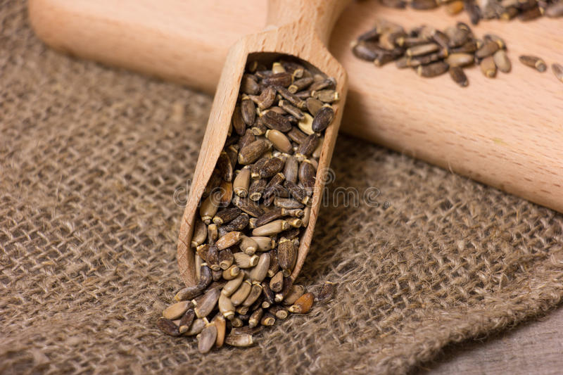 Seeds of a milk thistle. In a scoop on a wooden trencher stock photography