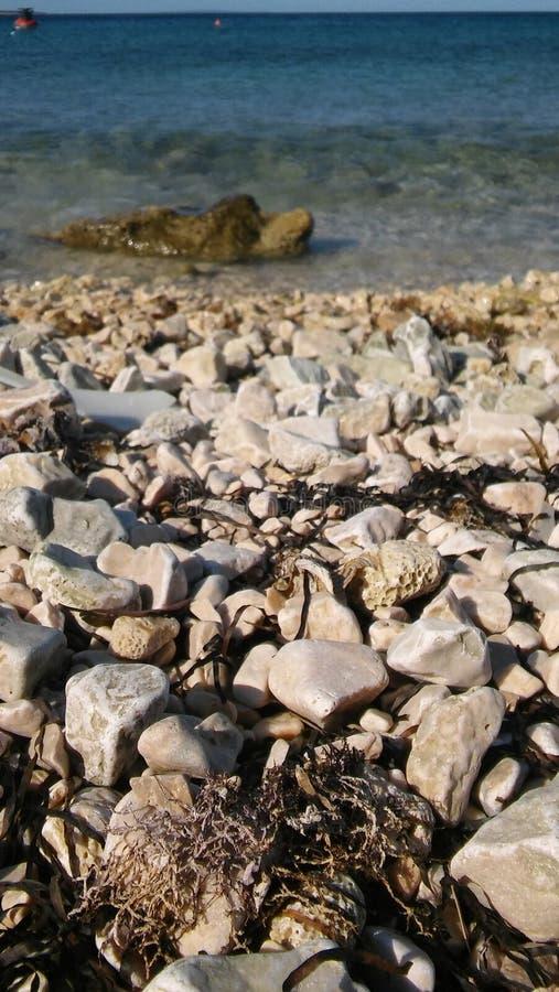 Seefelsen auf dem Ufer lizenzfreie stockfotos
