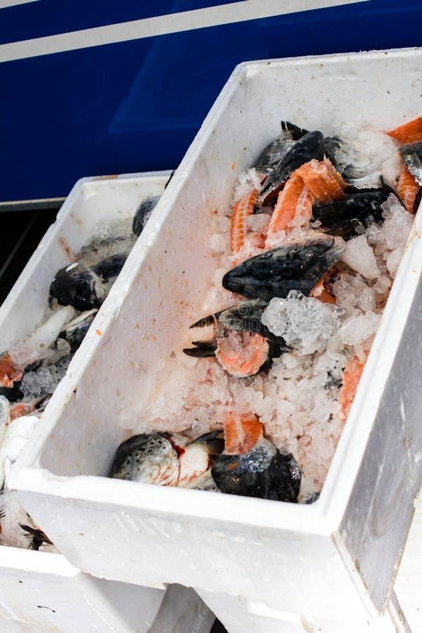 Seefisch und Eis in einem weißen Kasten oder in einem Behälter auf Fischmarkt in H lizenzfreies stockfoto