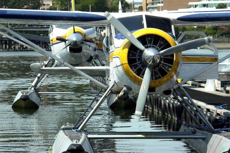 Seeflugzeuge stockfoto