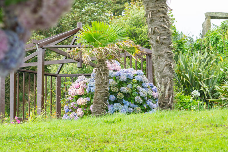 Seefront in Cornwall, ein tropischer Garten mit Strukturen lizenzfreie stockfotografie