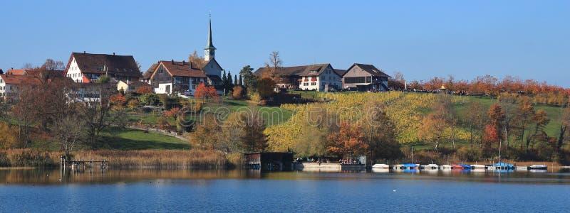 Seegraben,湖Pfaffikon岸的村庄  五颜六色的结构树 免版税库存图片