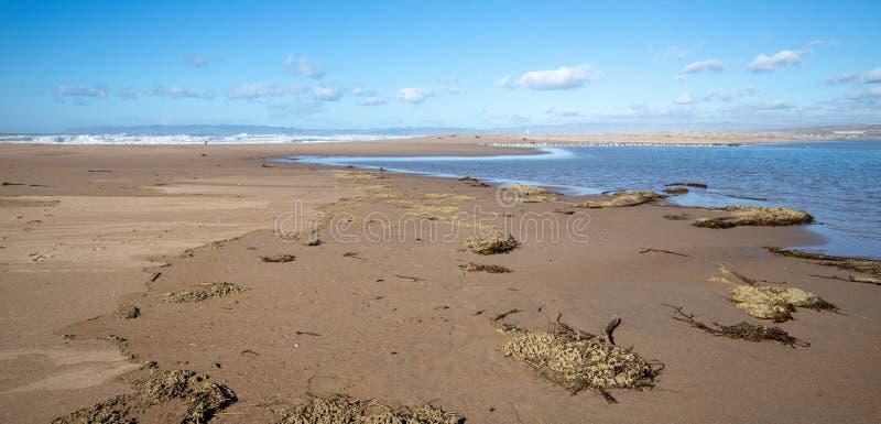 Seegras auf Isthmus des Sandes zwischen Fluss des Pazifischen Ozeans und Santa Marias bei Rancho Guadalupe Sand Dunes - Kaliforni lizenzfreies stockfoto