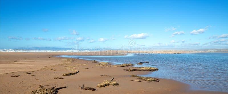 Seegras auf Isthmus des Sandes zwischen Fluss des Pazifischen Ozeans und Santa Marias bei Rancho Guadalupe Sand Dunes - Kaliforni lizenzfreie stockfotografie