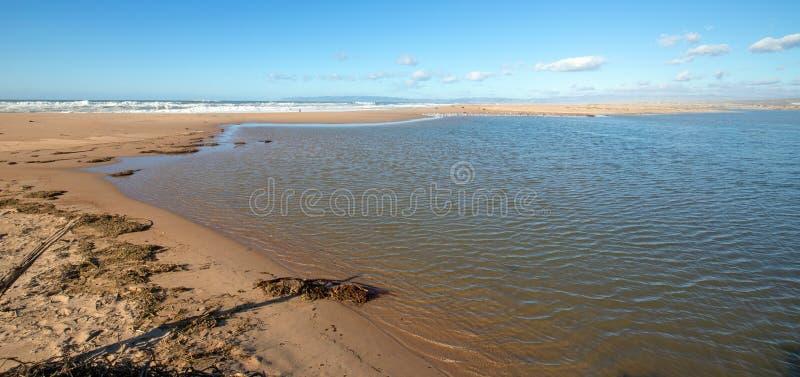 Seegras auf Isthmus des Sandes zwischen Fluss des Pazifischen Ozeans und Santa Marias bei Rancho Guadalupe Sand Dunes - Kaliforni lizenzfreies stockbild