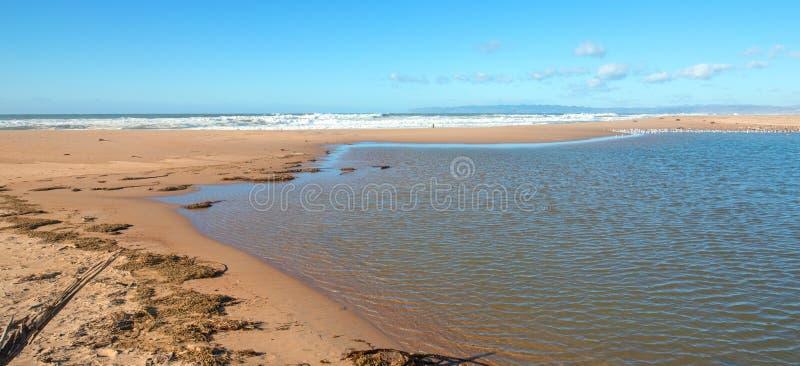 Seegras auf Isthmus des Sandes zwischen Fluss des Pazifischen Ozeans und Santa Marias bei Rancho Guadalupe Sand Dunes - Kaliforni stockbilder