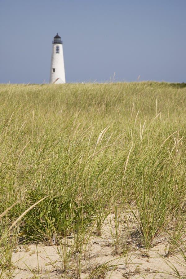 Seegras und große Punkt-Leuchte Nantucket stockbilder