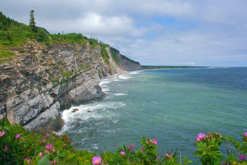 Seeklippen Forillon am Nationalpark lizenzfreie stockbilder