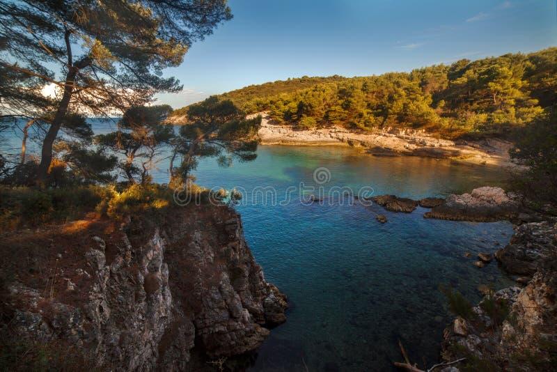 Seelandschaft mit Felsen, Klippen und Wald an einem sonnigen Sommertag kroatien lizenzfreie stockfotos